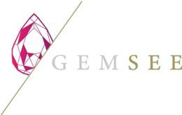 株式投資型クラウドファンディングサービス「GEMSEE」第一号案件である株式会社One Terraceの資金調達完了について(SBI CapitalBase)