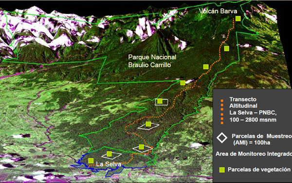 Map showing the team's study plots (green squares) stretching from the lowlands up the mountain to a height of 2800 metres. Image credit Kenneth Feeley.