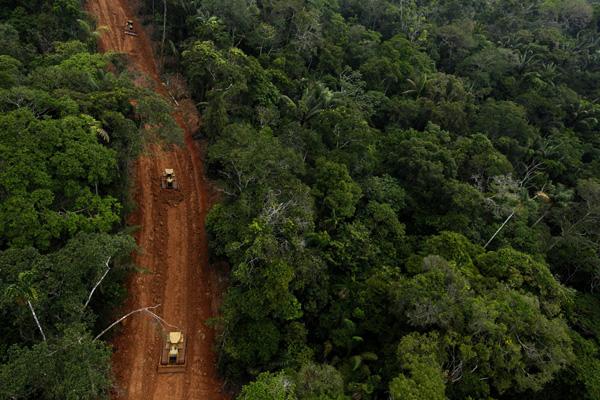 Secret carretera selva amazónica