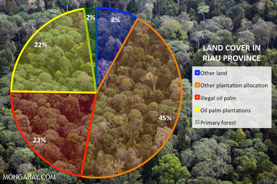 chart showing land cover in Riau
