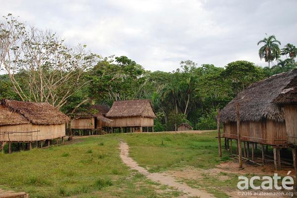Matsés village. Photo courtesy of Acaté.