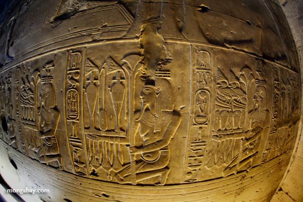 Wall Carvings At Abydos