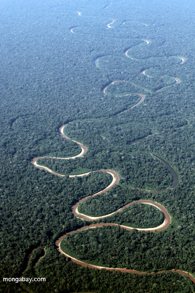 Meandering river in the Amazon.