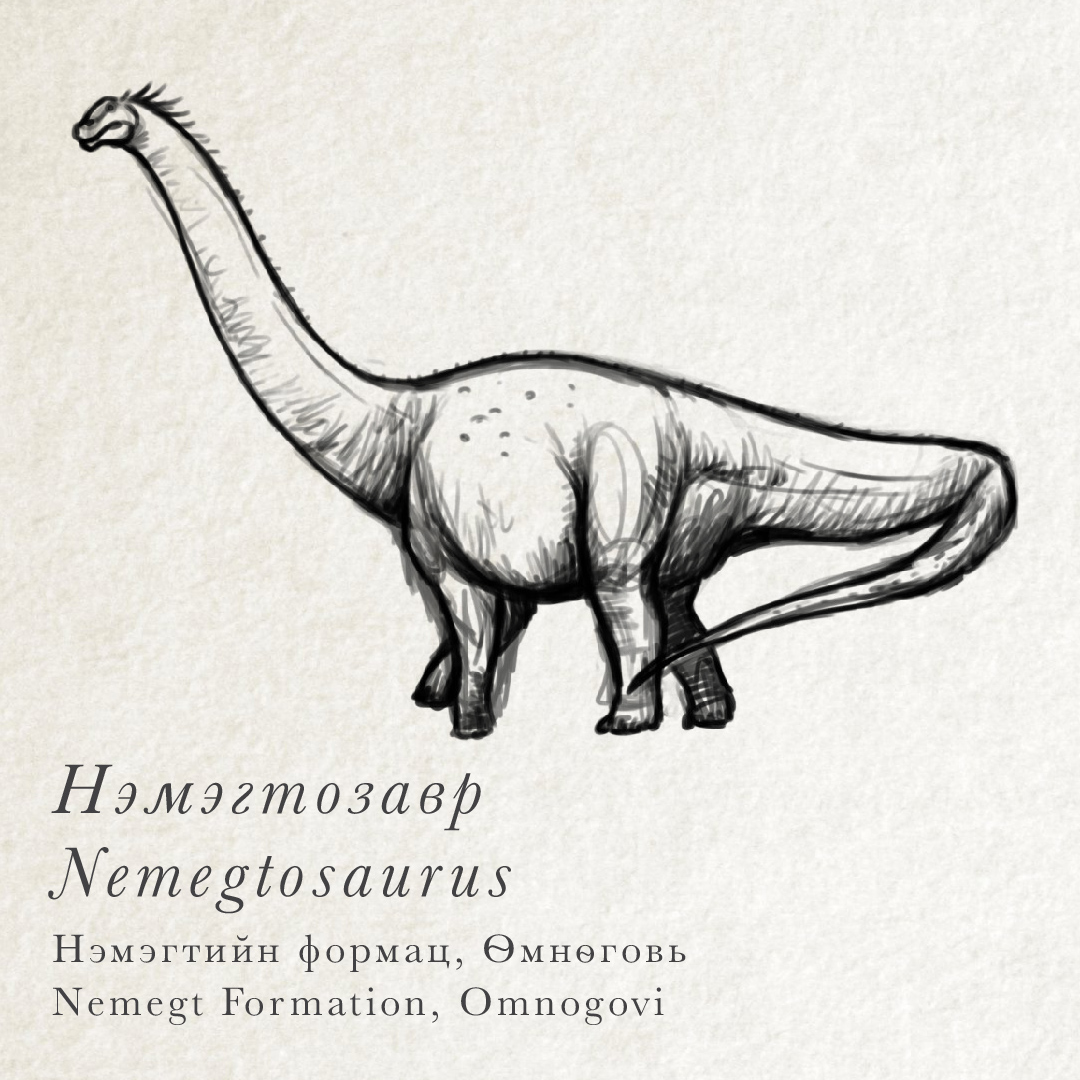 Uncategorized Sketches Of Dinosaurs mongolian dinosaurs institute for the study of known from only a skull nemegtosaurus is related to some largest that ever existed bones gigantic di