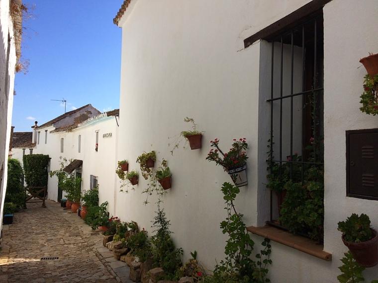 カスティーリョデカステリャールの白い村