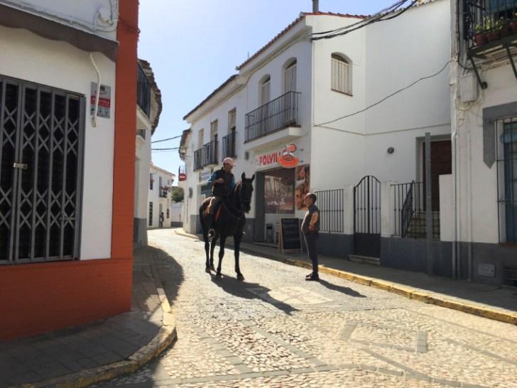 ハブーゴの町を歩く馬