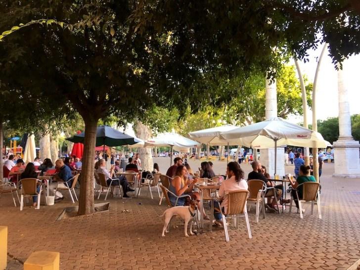 セビリアのアラメダの広場とバル