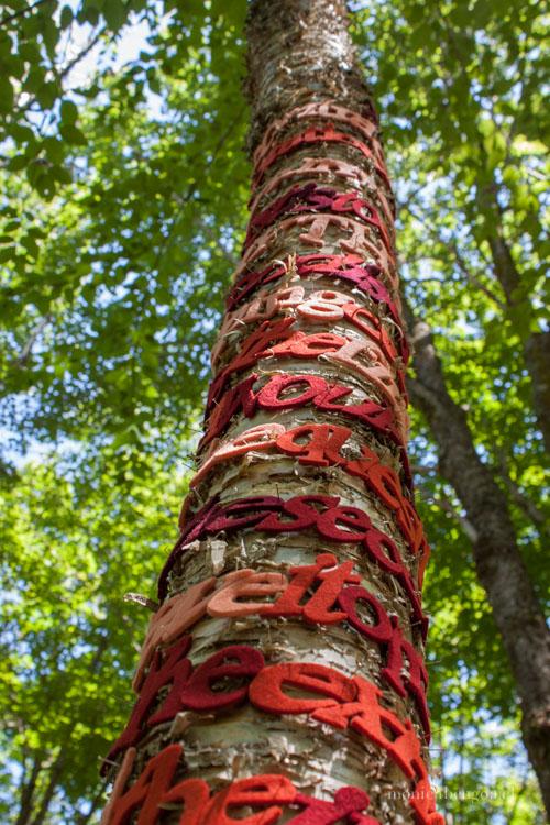 Instalación de fieltro de lana natural calado a mano sobre árboles.