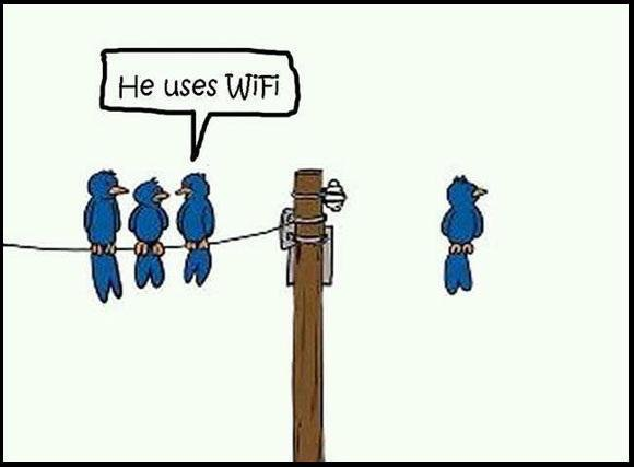 Fungerande wifi på campingar är ett stort plus. 😄