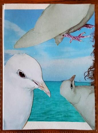 doves make artist trading cards