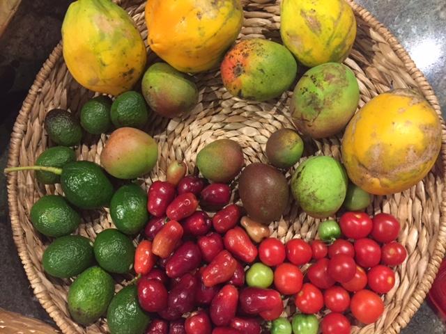 so-far summer fruit