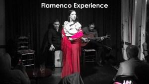 Flamenco Experience KIDS Mónica Tello