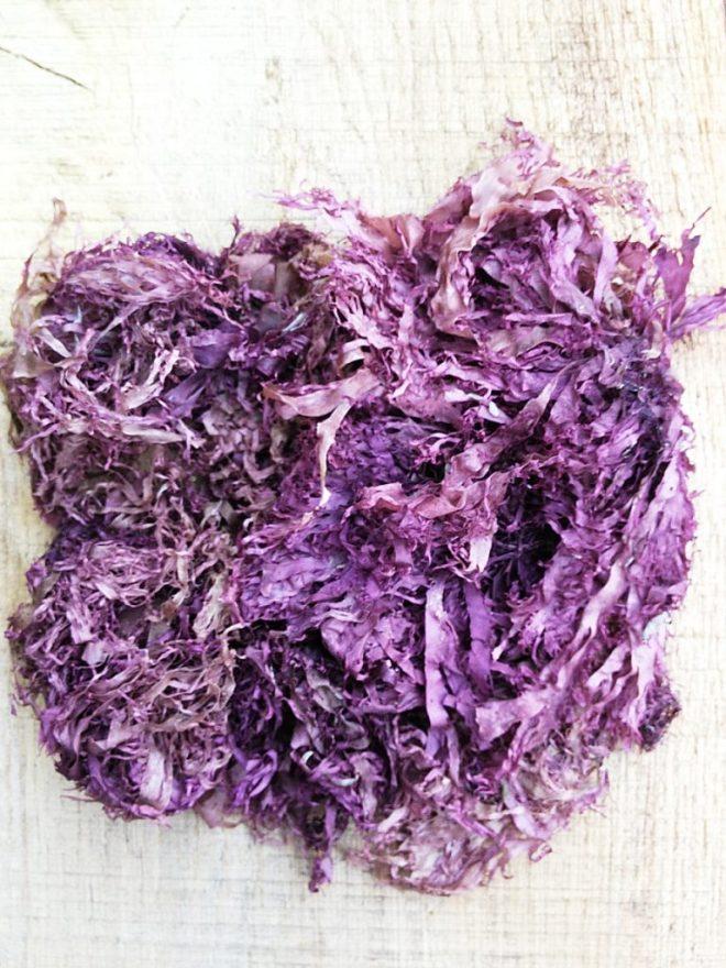 Dried dulse seaweed