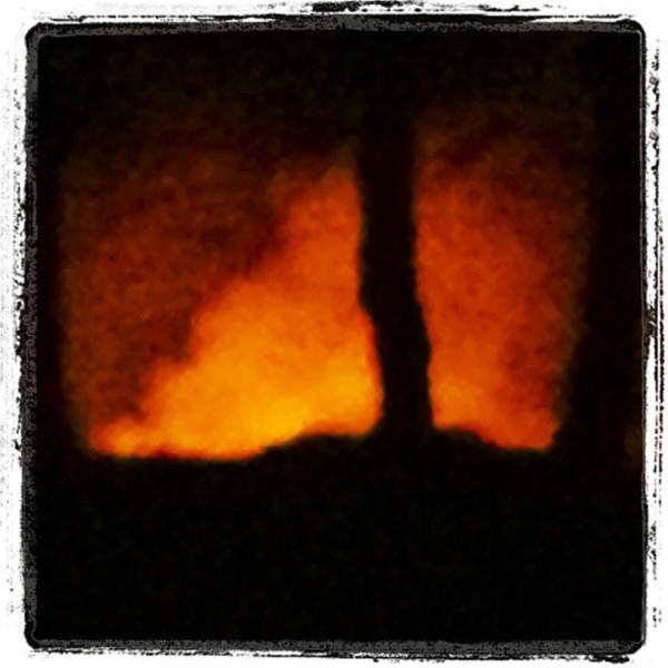 gorse-fire