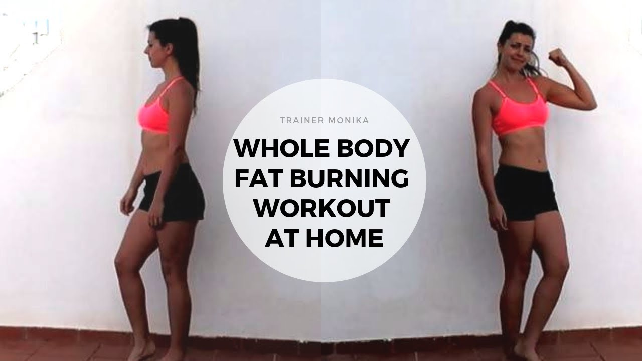 Whole body fat burning workout at home
