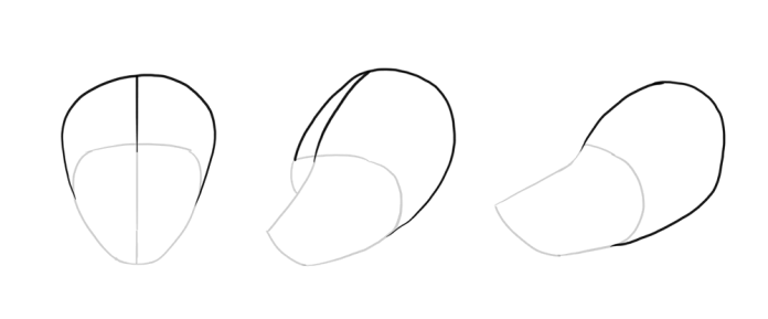 how-to-draw-wolves-drawing-head-4