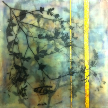 Encaustic mixed media with fynbos monotypes Monique Day-Wilde (4)