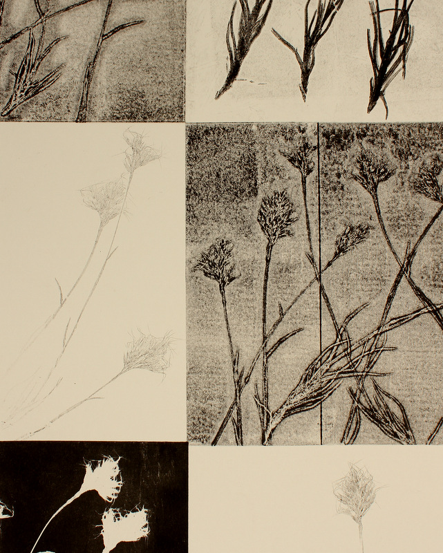 Unique Hand printed Botanical Monotype Monique Day-Wilde