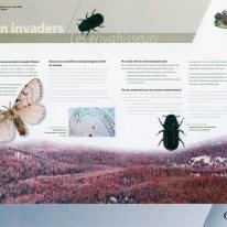 Alien Invaders exhibit - backdrop panel #3 (exhibit area 2)