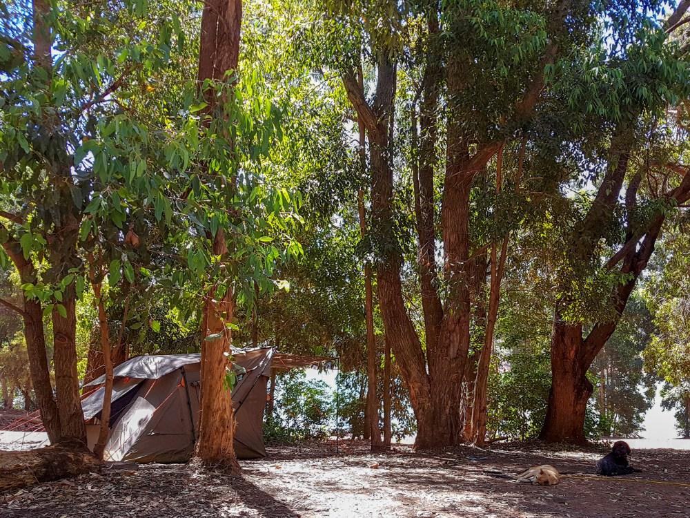Camping at Waroona Dam