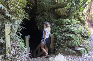 Piripiri Cave Walk 1