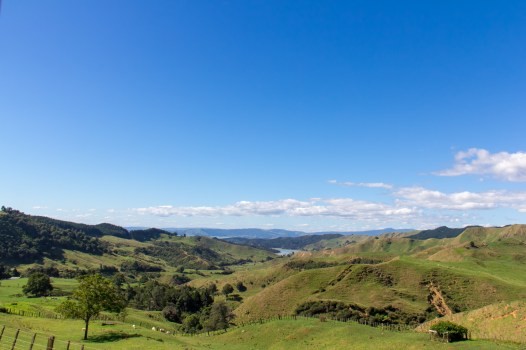 Waitomo New Zealand 1