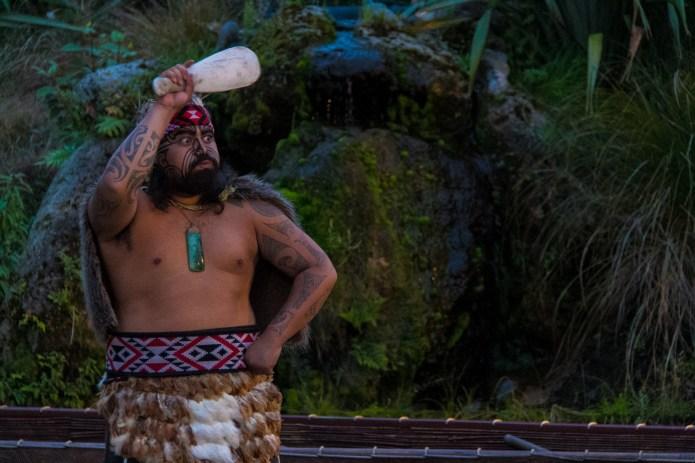 Tamaki Maori Village 2