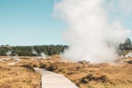 7 New Zealand Activities 2