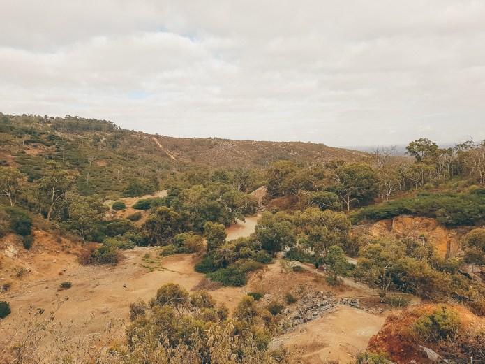 Ellis Brook Reserve 2