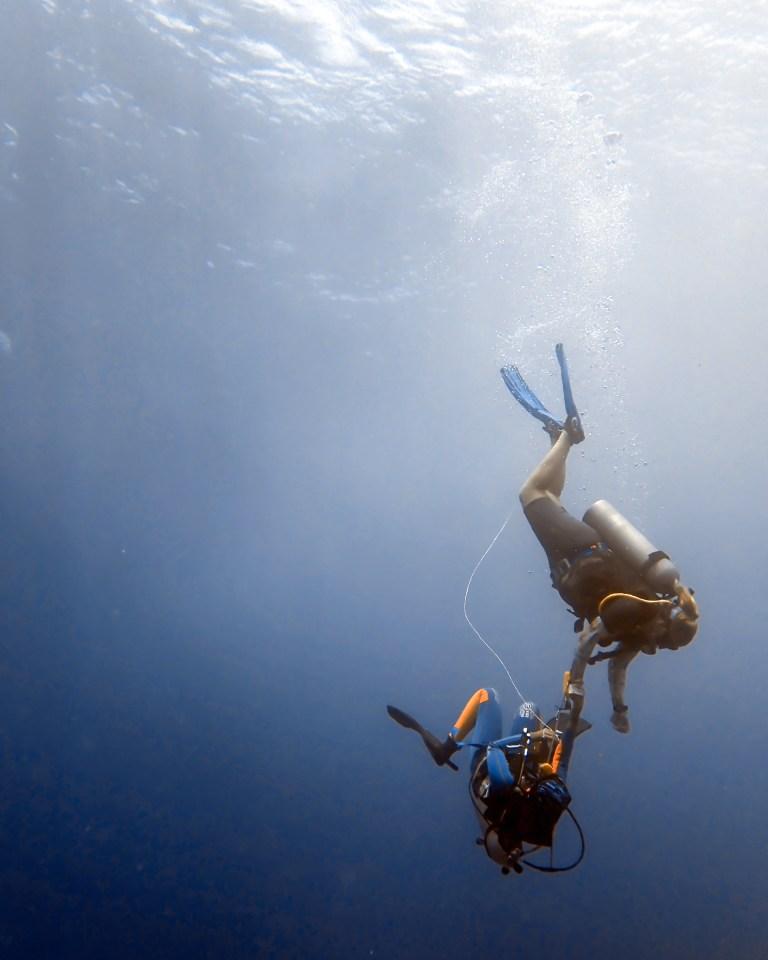 Blue Corner Dive Master Training Rapidly Ascending Diver