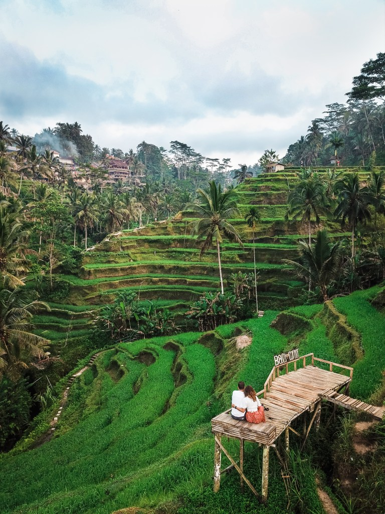 Tegallalang Rice Terraces Ubud Bali Indonesia