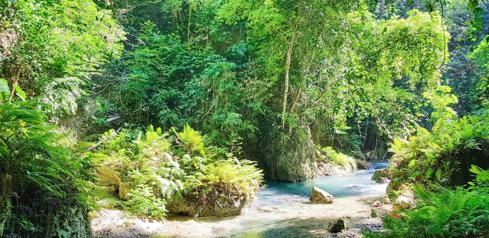Kawasan Falls Cebu Philippines 2