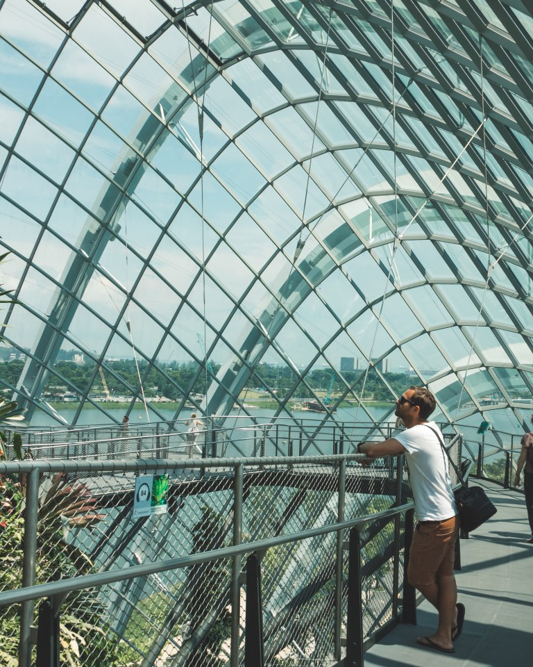 Gardens by the Bay Singapore Cloud Garden Greenhouse Viewing Platform