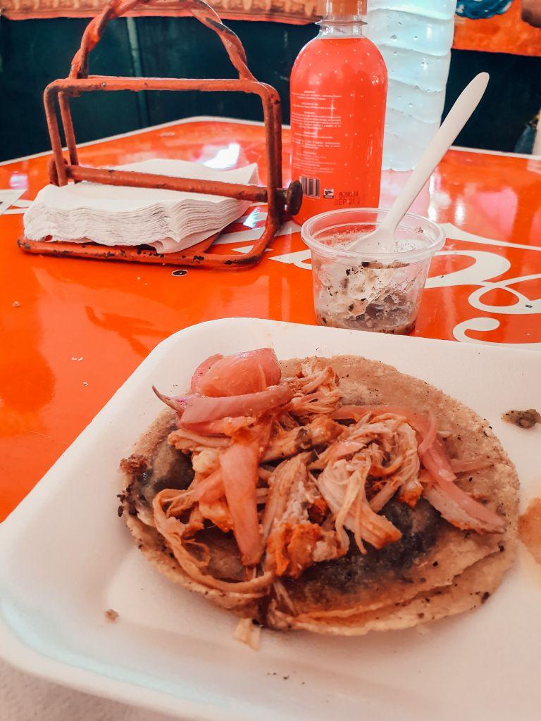 Taco Merida Yucatan Mexico North America
