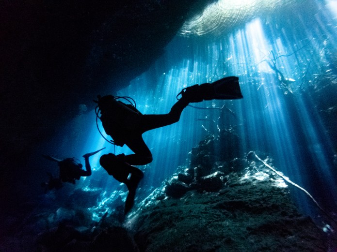 Scuba Dive Cenote Jardin del Eden Playa del Carmen Mexico North America