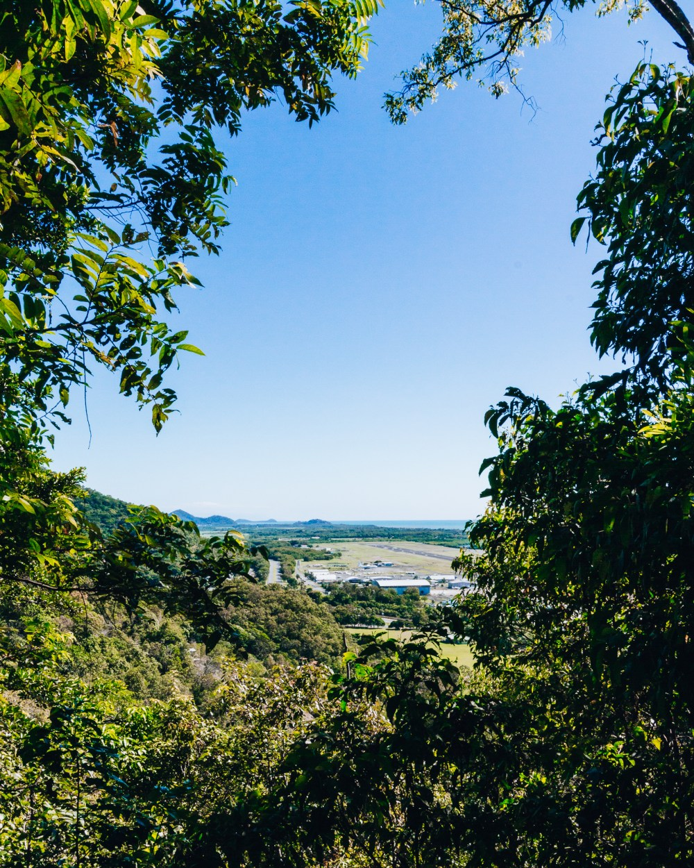The Arrows Hike Cairns Queensland Airport Lookout
