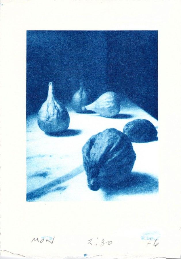 cyanotype-figs