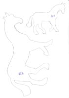 animaux_003