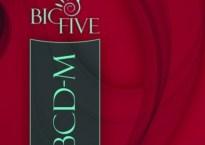 ABCD-M - Chestionarul Big Five Minulescu