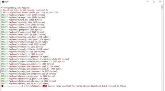 create a new Angular CLI Project