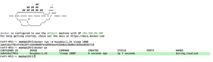 Docker ps command