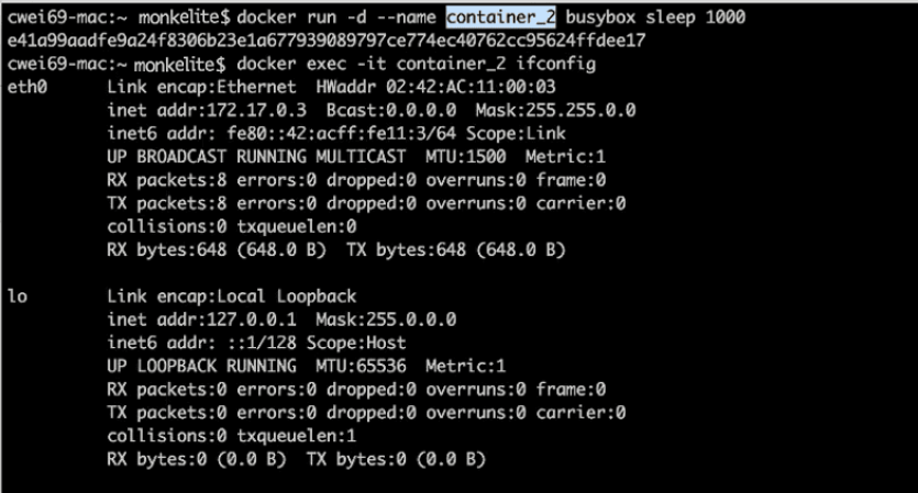 docker bridge container