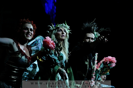 Opening_Night_(Bal_du_masque)_(1)_1.jpg