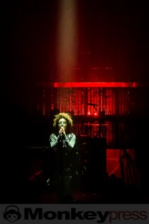 Massive Attack, (c) Michael Gamon