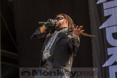 Skindred, © Markus Hillgärtner