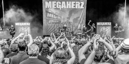 Megaherz, © Dietmar Grabs