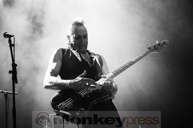The Membranes, © Sandro Griesbach