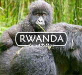 best places to visit in Rwanda for gorillas, other primates and nature