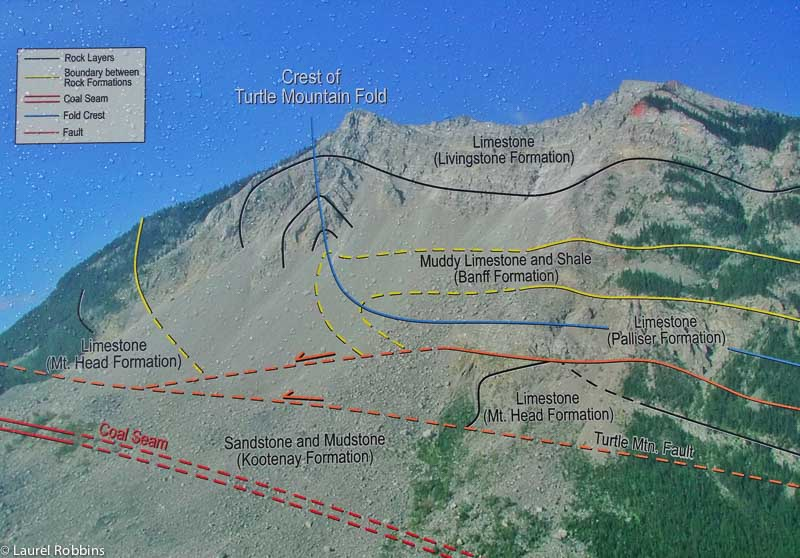 Diagram showing the fault lines and coal seams in Turtle Mountain
