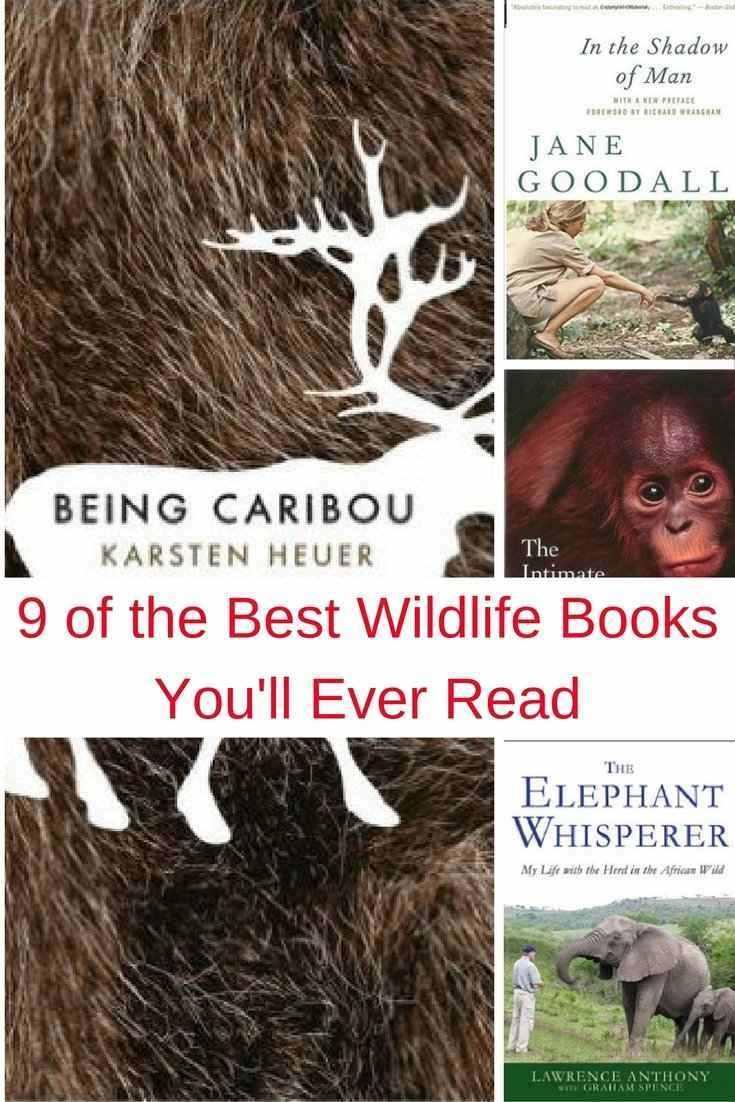 books about wild animals